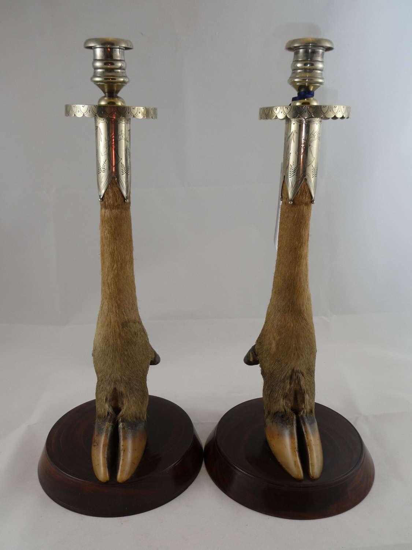Pair of Deer Hoof Candlesticks