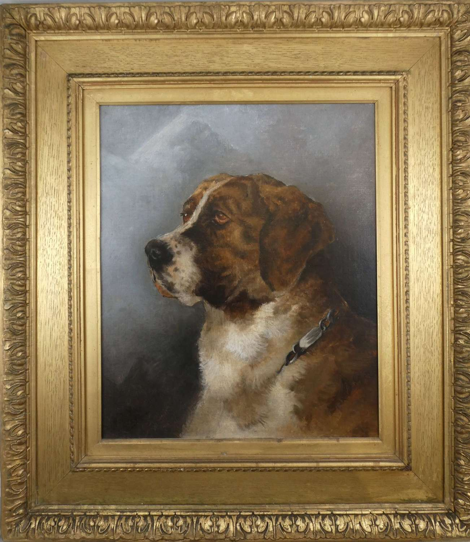 Oil Painting of a St Bernard Dog