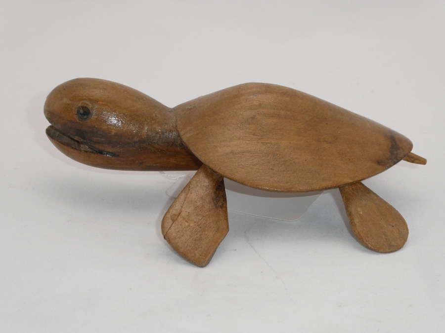 Pitcairn Island Turtle